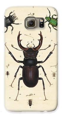 Minotaur Galaxy S6 Cases