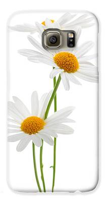 Daisies Galaxy S6 Cases