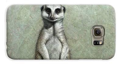 Meerkat Galaxy S6 Cases