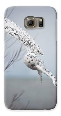 Owl Galaxy S6 Cases