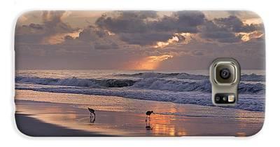Sandpiper Galaxy S6 Cases