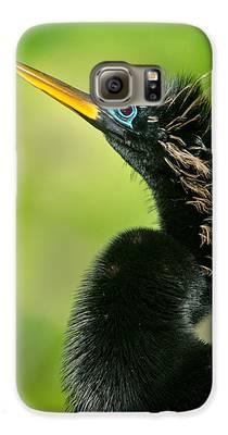 Anhinga Galaxy S6 Cases