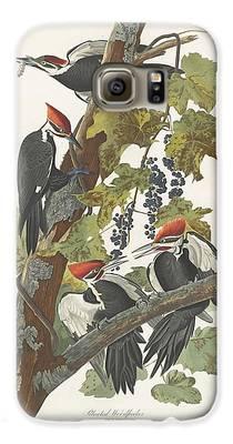 Woodpecker Galaxy S6 Cases