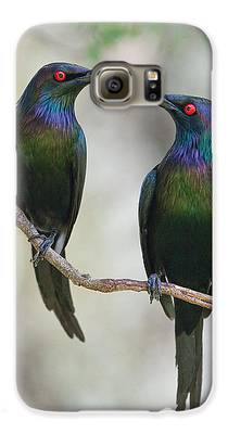 Starlings Galaxy S6 Cases