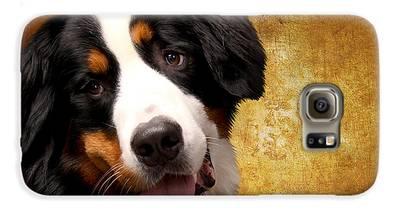 Bernese Mountain Dog Galaxy S6 Cases