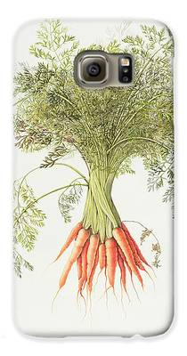Carrot Galaxy S6 Cases