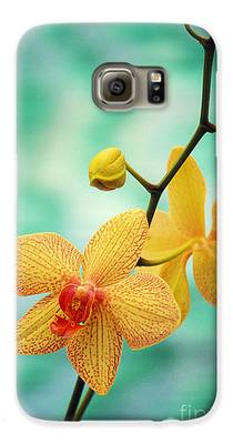 Orchids Galaxy S6 Cases