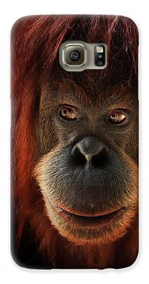 Orangutan Galaxy S6 Cases