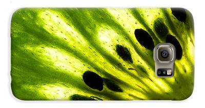 Kiwi Galaxy S6 Cases