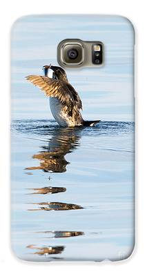 Auklets Galaxy S6 Cases