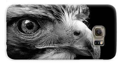 Buzzard Galaxy S6 Cases