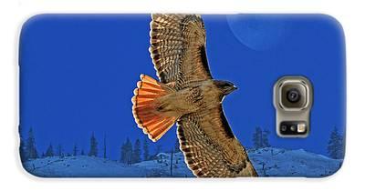 Hawk Galaxy S6 Cases