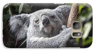 Koala Galaxy S7 Cases