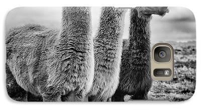 Llama Galaxy S7 Cases
