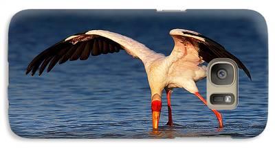 Ibis Galaxy S7 Cases