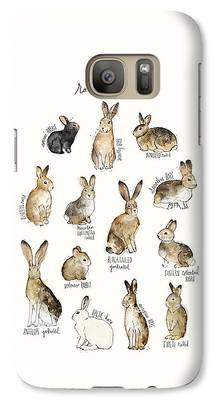 Rabbit Galaxy Cases
