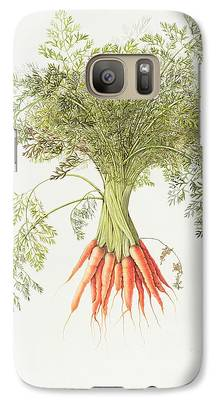 Carrot Galaxy S7 Cases