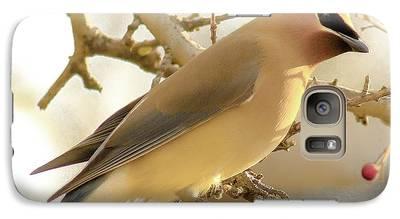Cedar Waxing Galaxy S7 Cases