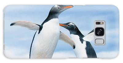 Penguin Galaxy Cases