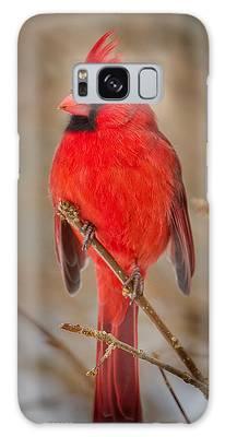 Cardinal Galaxy Cases