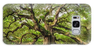 Oak Tree Galaxy Cases