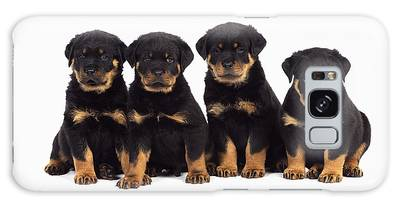 Designs Similar to Rottweiler Puppy Dogs
