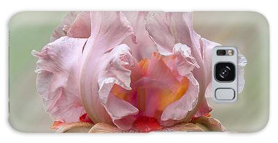 Galaxy Case featuring the photograph Pink Electrabrite Bearded Iris by Patti Deters