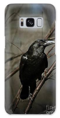 American Crow Galaxy Case