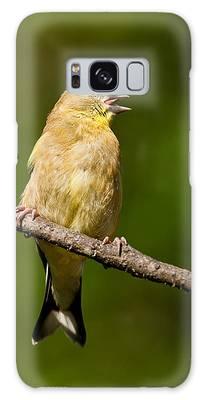 American Goldfinch Singing Galaxy Case