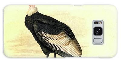 Condor Galaxy Cases