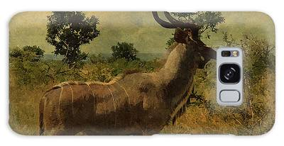 Galaxy Case featuring the photograph Antelope by Ericamaxine Price