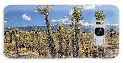 Antelope Valley Joshua Trees 1 Galaxy Case