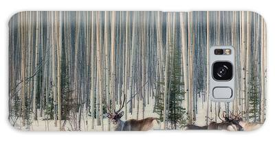 Boreal Forest Photographs Galaxy Cases