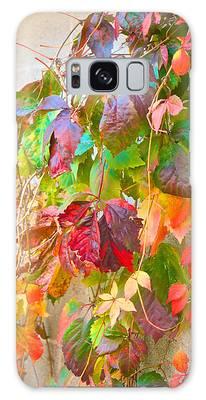 Autumn Colors Of Virginia Creeper Galaxy Case