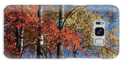 Autumn II Galaxy Case