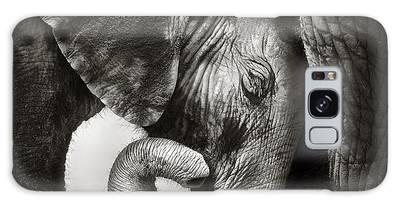 Elephant Close Up Galaxy Cases