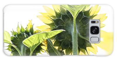 Backside Of Sunflower Galaxy Case