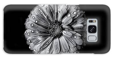 Galaxy Case featuring the photograph Backyard Flowers In Black And White 10 After The Storm by Brian Carson