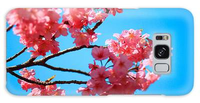 Beautiful Bright Pink Cherry Blossoms Against Blue Sky In Spring Galaxy Case