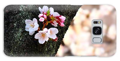 Beautiful Cherry Blossoms Blooming From Tree Trunk Galaxy Case