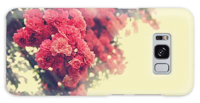 Beautiful Pink Climbing Roses With Streaming Sunlight Galaxy Case