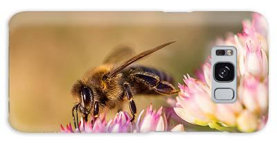 Bee Sitting On Flower Galaxy Case