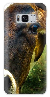 Cow Eating Grass Galaxy Case