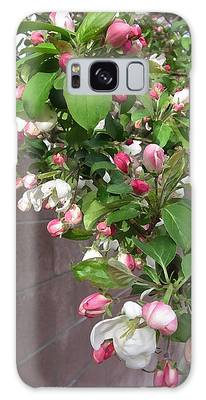 Crabapple Blossoms And Wall Galaxy Case