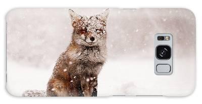 Fox Galaxy Cases