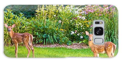 Fawns In The Afternoon Sun Galaxy Case