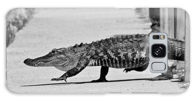 Galaxy Case featuring the photograph Gator Walking by Cynthia Guinn