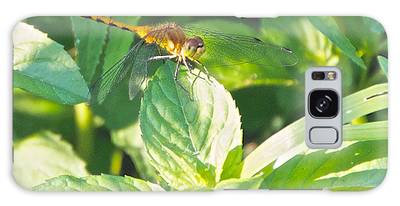 Golden Dragonfly On Mint Galaxy Case