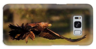 Golden Eagle On The Hunt Galaxy Case