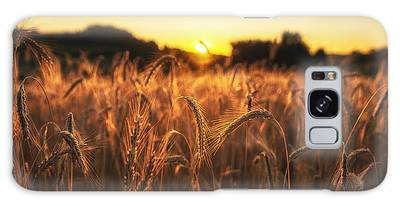 Galaxy Case featuring the photograph Golden Fields by Ryan Wyckoff